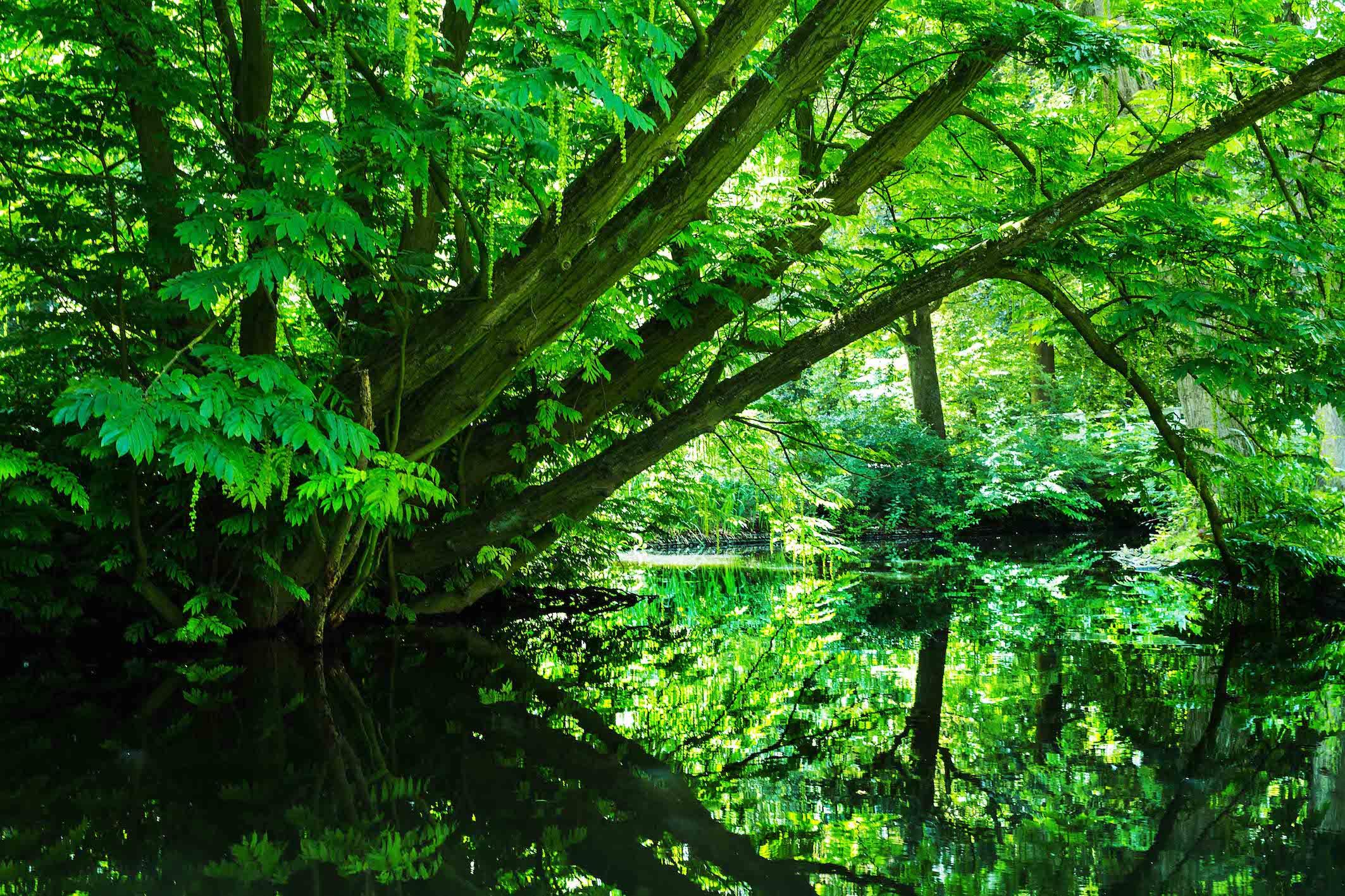 Realfort Expositie Wilhelminapark Utrecht8