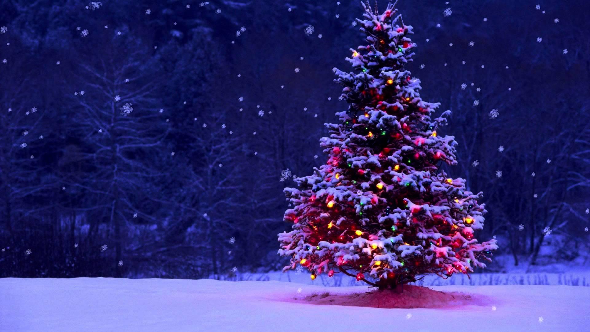 FourVision Happy Holidays Christmas tree